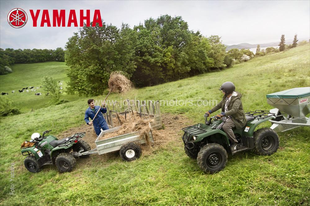 Yamaha Grizzly YFM 350 4WD