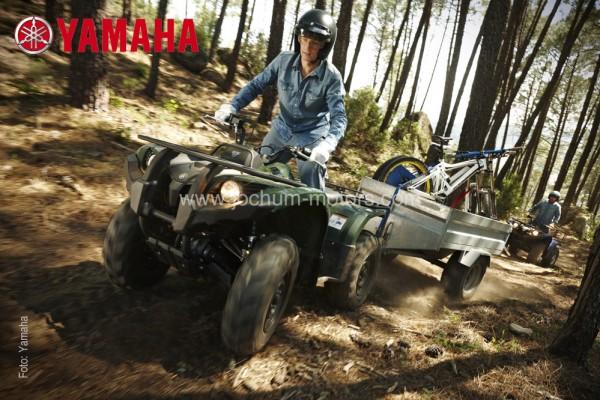 Yamaha Grizzly YFM 450 IRS