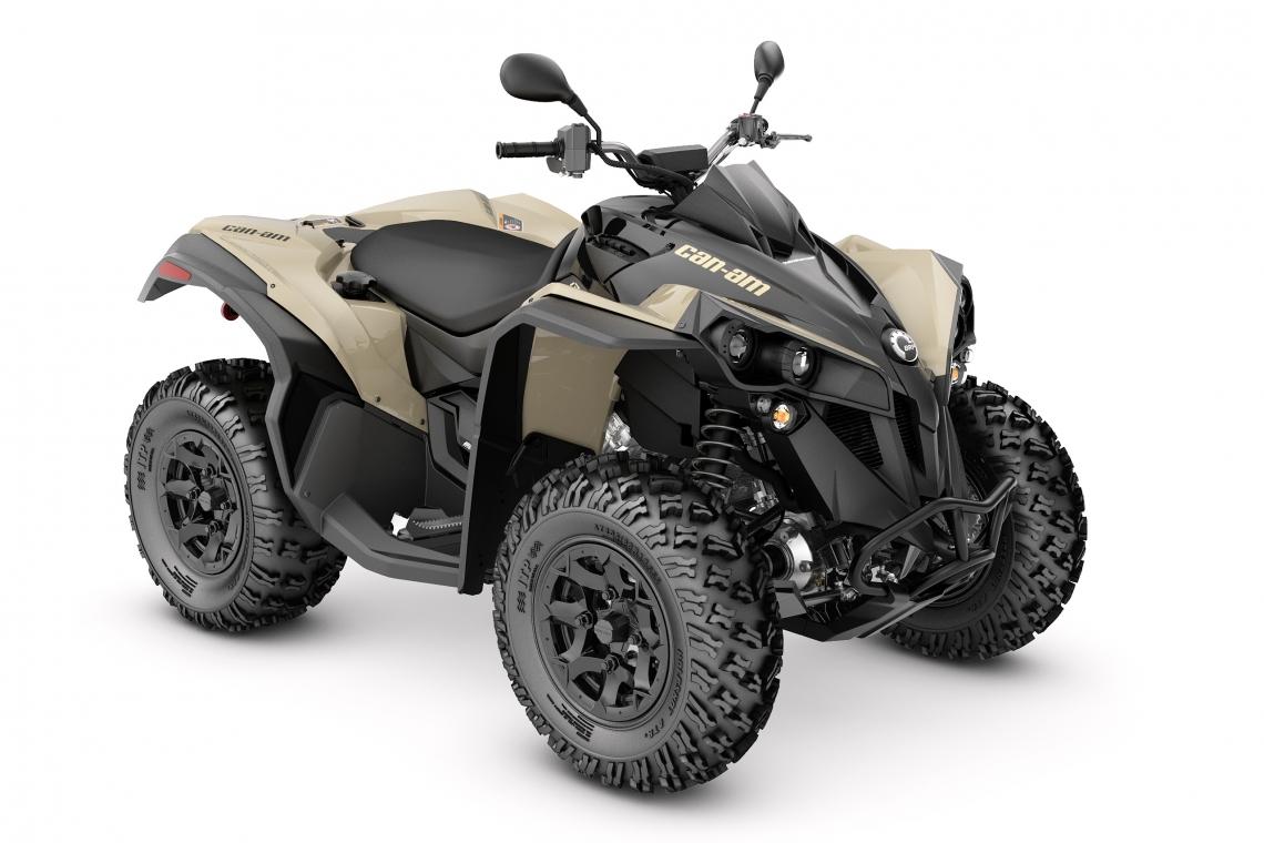 Can-Am Renegade 650 DPS T | ATV 2021